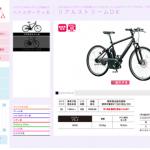 ブリヂストンサイクルのスポーツタイプ電動アシスト「リアルストリームDX」