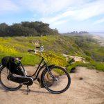 自転車らしい自転車(2)