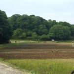 田植えが近い「寺家ふるさと村」