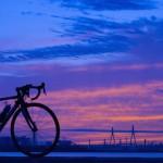 などかずPhotoだより:朝のサイクリングと巨大客船。