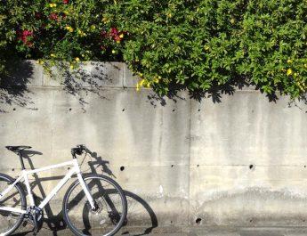 あなたにおすすめのクロスバイクはコレ!2017-2018年バイヤーズガイド