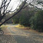 【町田の】かつて戦車道路と呼ばれた尾根緑道【サイクリングコース】