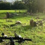 【町田の】多摩ニュータウン通りの終点近くにあるストーンサークル【サイクリングスポット】